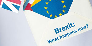 brexit workshop