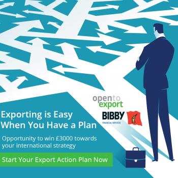 birmingham export action plan final