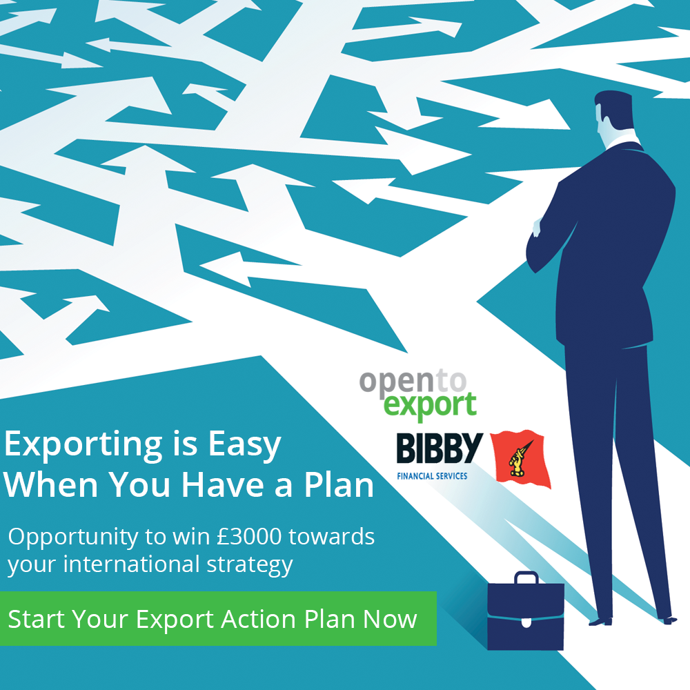 birmingham export action plan final